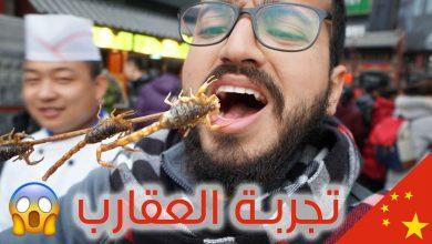 صورة سعودي أكل العقارب بالصين.للتجربة فيديوهات
