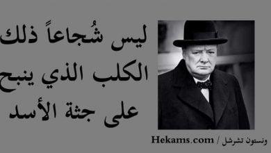 صورة صدق تشرشل حينما قال اذا مات اهل شمال اليمن ستموت الخيانه.للكاتبه اليمنية بلقيس