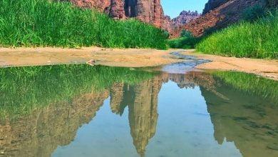 """صورة بالصور.. وادي الديسة في قلب """"نيوم"""" الجديدة.مناظر لن تصدق أنها بالمملكة"""