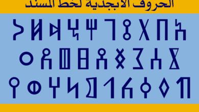 صورة خط المسند والكتابة العربية، قراءة جديدة في أصل الكتابة العربية