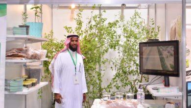 صورة خضر سعيد طالع الغامدي يحقق إنجازاً علمياً بزراعة شجرة «الأراك» على مياه البحر المالحة.