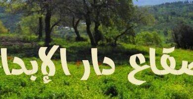 صورة الشاعر. سالم بن عثمان بن محمد حنش الغامدي. وشهرته (أبو حنـش) مجيد للكثير من أغراض الشعر